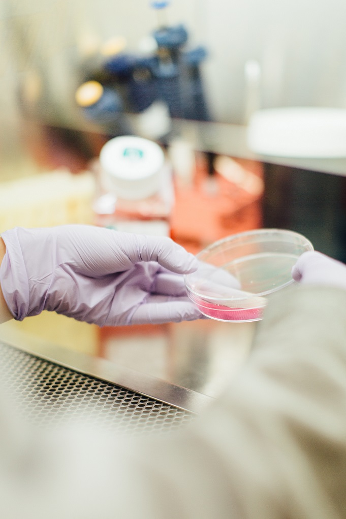 Pfizer Expanding Lee County Plant in Push to Develop New Gene Therapies