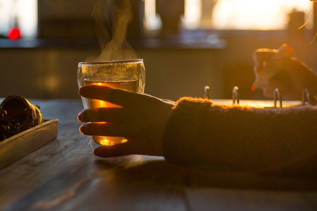 Asheville-Based Maker of Kombucha Tea Adding 28 Jobs at Madison County Brewery